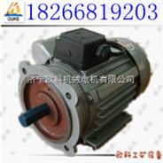 单相异步电机 YC电机 单相电机制造商