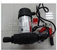 单相电动油泵