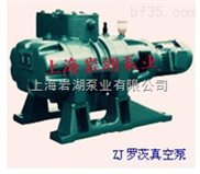 ZJ型羅茨式真空泵