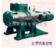 ZJ型羅茨式真空泵系列