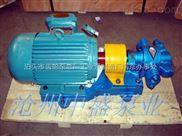 2CY5/0.6-4船用齒輪泵,泊頭齒輪泵南京現貨