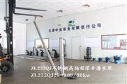 天津高揚程潛水泵