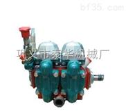 S电动柱塞隔膜泵
