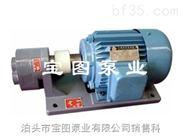 宝图名牌齿轮泵型号.小型齿轮泵.小流量齿轮泵价格