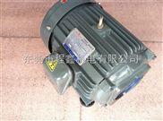 油泵馬達,油泵電機,油泵電動機