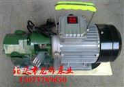 WCB-50齿轮油泵/单相手提泵 龙都现货批发