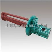 熔盐泵 GY50-215